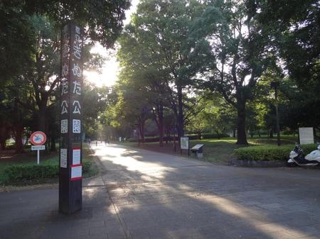 砧公園 緑豊な公園でペットや家族連れの方達が多く訪れます。