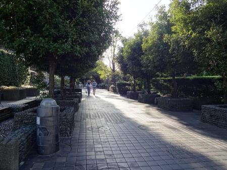 用賀駅北口から砧公園、世田谷美術館まで続いている遊歩道です。