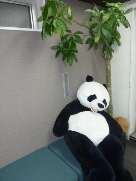 お子様の遊び相手をパンダが引き受けます!