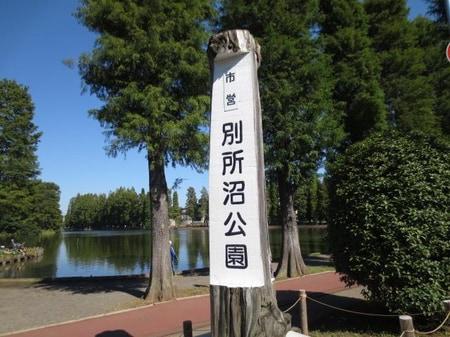 中浦和駅徒歩3分ほどに別所沼公園があります。広さ7.9haで園内には様々な巨木が立ち並んでいます。