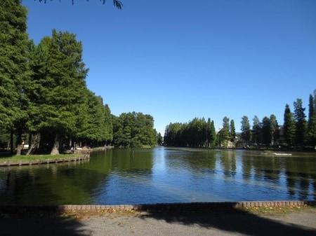 公園の約半分を占める別所沼です。周囲が1kmでウォーキング・ランニングもできます。釣りもできますよ。