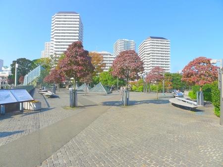 川口駅西口の公園です。春は桜が満開になります!