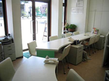 カウンター席の配置で緑が多いのが特徴の店内です。