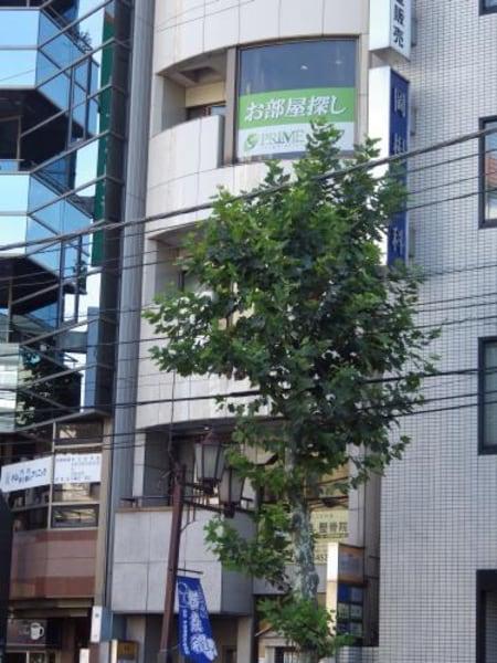 中目黒駅1分。1階に看板が出ています。