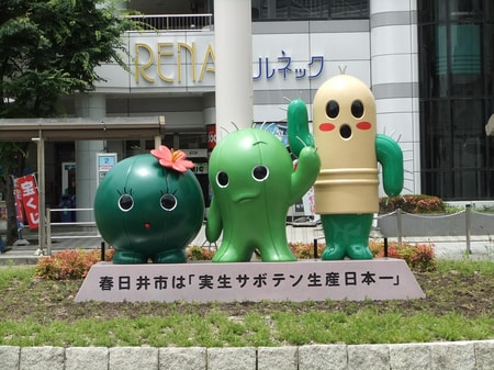 春日井市はサボテン生産日本一